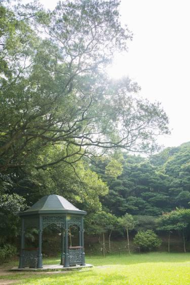 The Peak(山頂)-05
