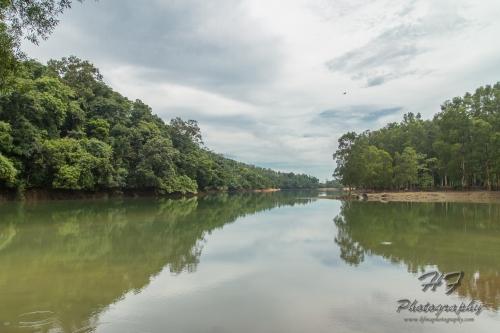 Shing Mun Reservoir(城門水塘)-05