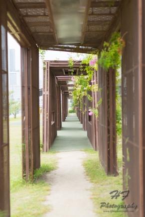 Hoi Bun Road Park(海濱道公園)-01