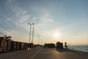 Western District Public Cargo Working Area(西區公眾貨物裝卸區)-25