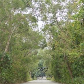 Lamma Island(南丫島)-11