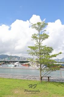Hoi Bun Road Park(海濱道公園)-10