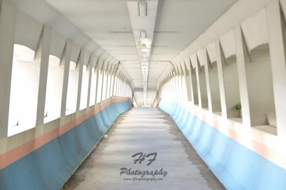 Hoi Bun Road Park(海濱道公園)-13