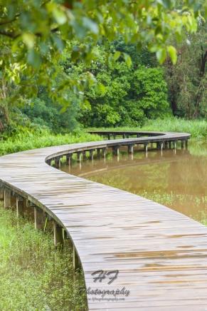 Hong Kong Wetland Park(香港濕地公園)-03