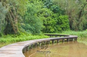 Hong Kong Wetland Park(香港濕地公園)-04