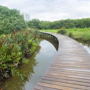 Hong Kong Wetland Park(香港濕地公園)-06
