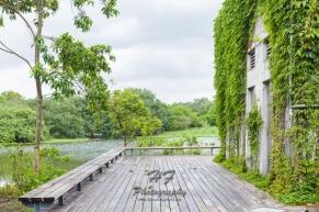 Hong Kong Wetland Park(香港濕地公園)-10